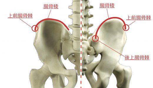 骨盤の検査